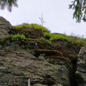 Buchenau – Kiesruck